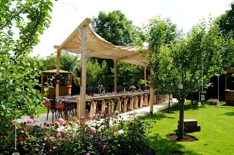 Pergole din lemn: proiectare și execuție